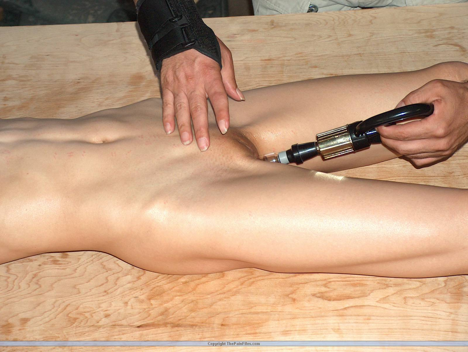 fn venus film bdsm