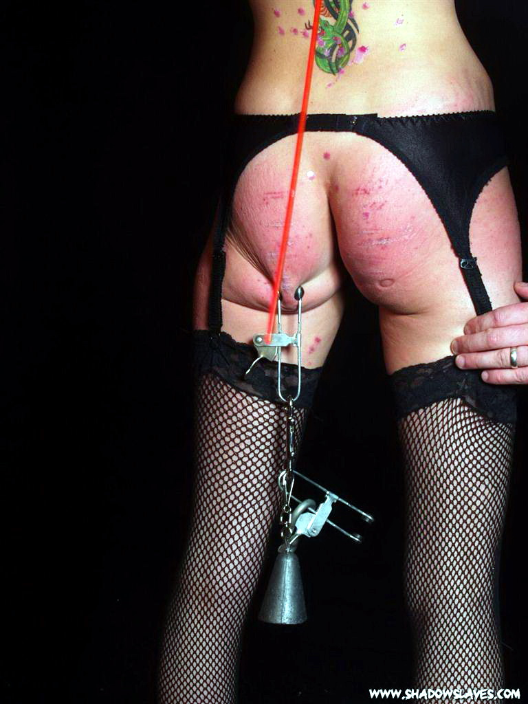 Useful piece bdsm horror tgp agree with