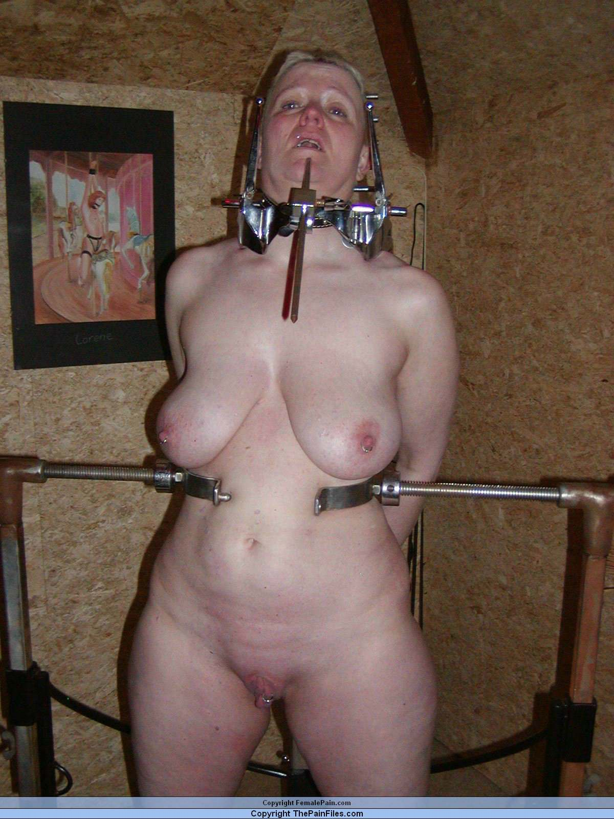 Amateur mature extreme bondage pain