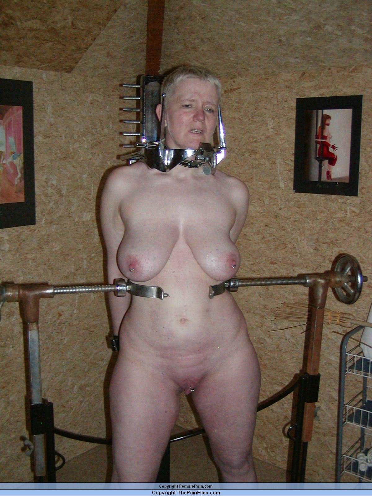 bdsm brüste bdsm club