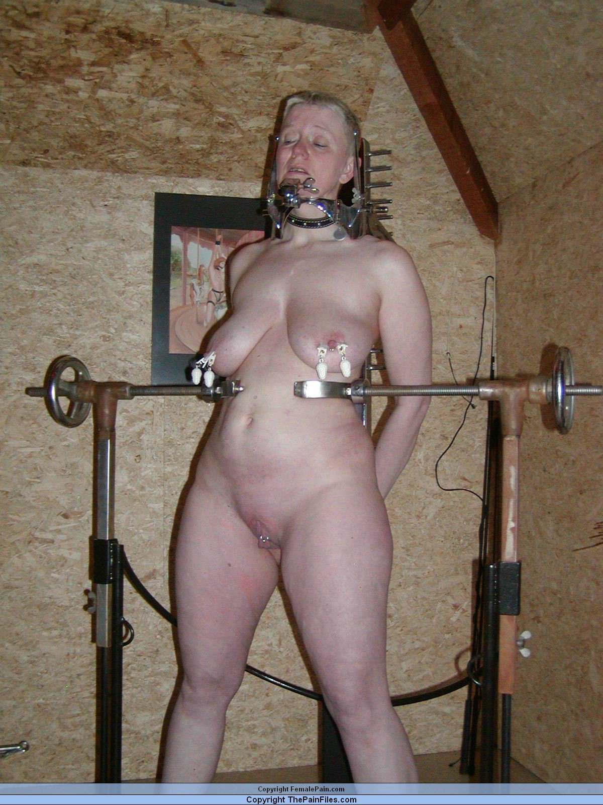 sex in kiel homemade bdsm