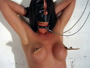 Busty Daniellas bound breast whipping and bdsm nipple torments in the old dungeon from The Pain Files