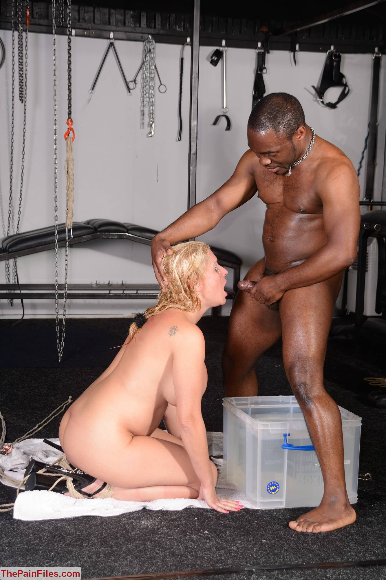 Interracial Bdsm