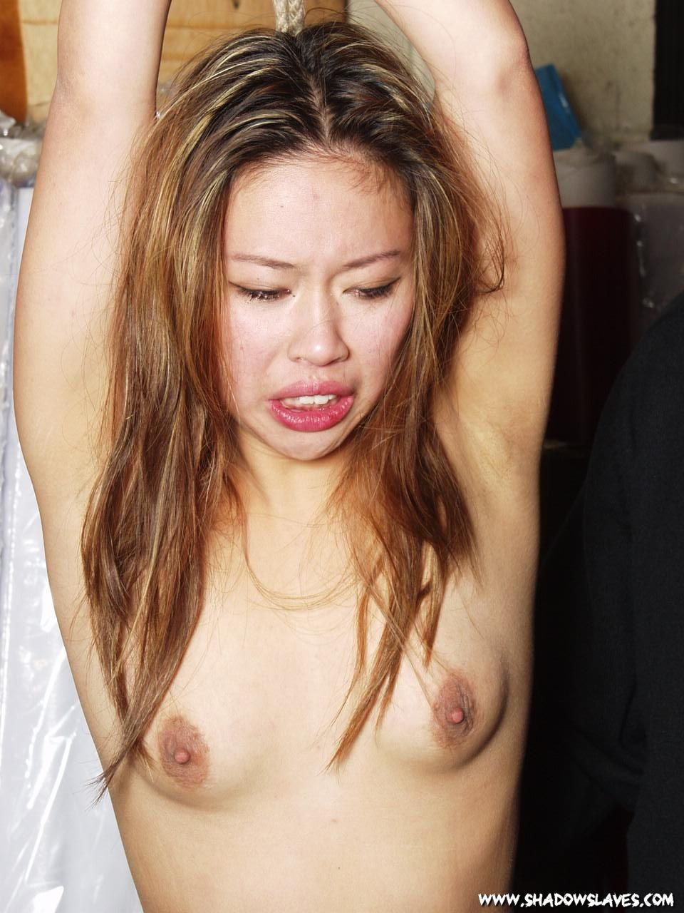 Hustler asian sex