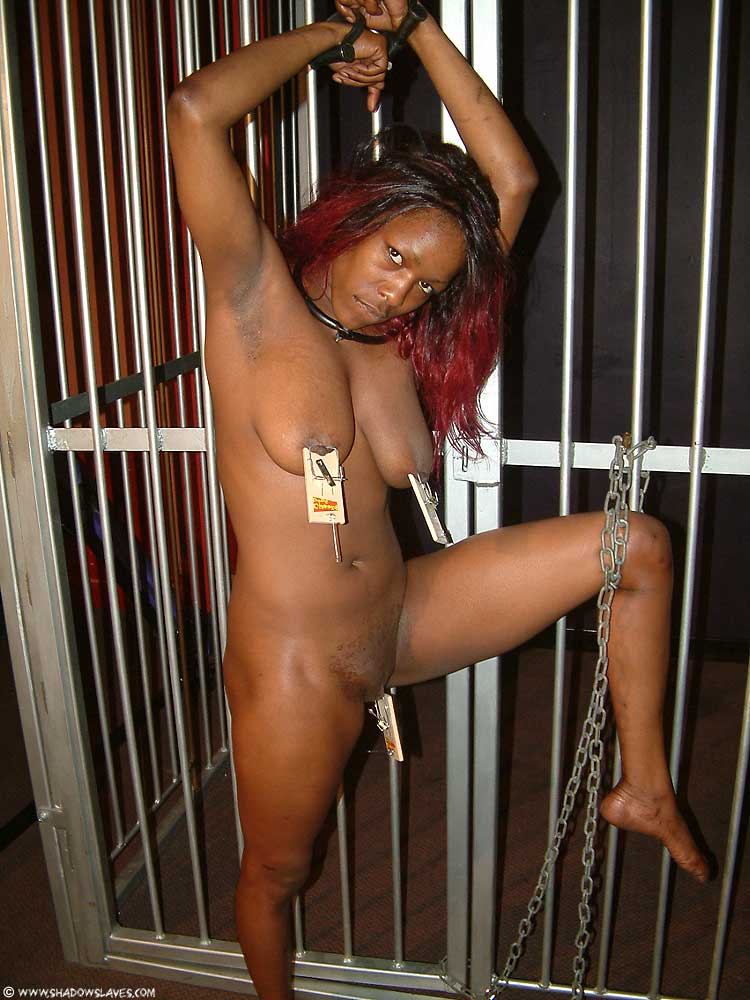 black sluts porn bdsm - Ebony bdsm slaves
