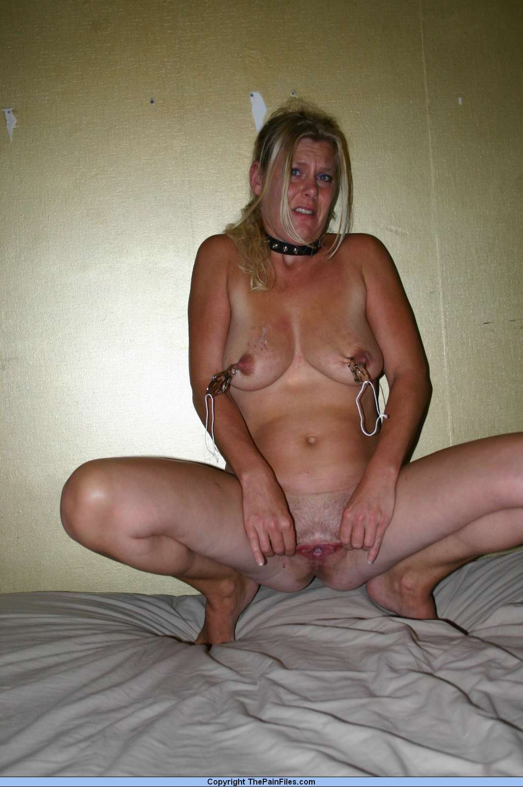 Free amateur pictures nipples