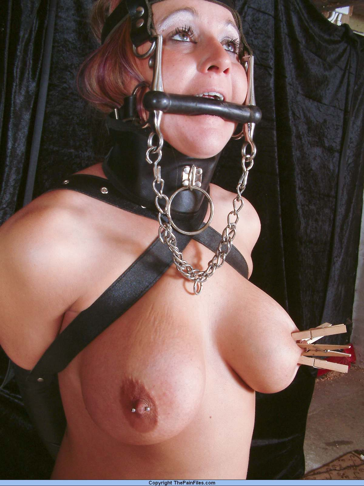 bdsm pony ponies slave girl
