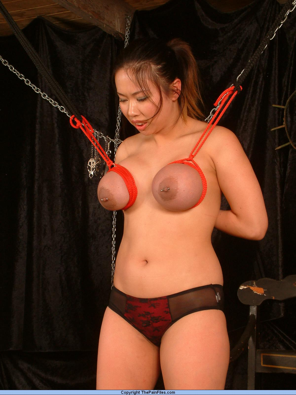 Accept. japanese breast rope bondage opinion