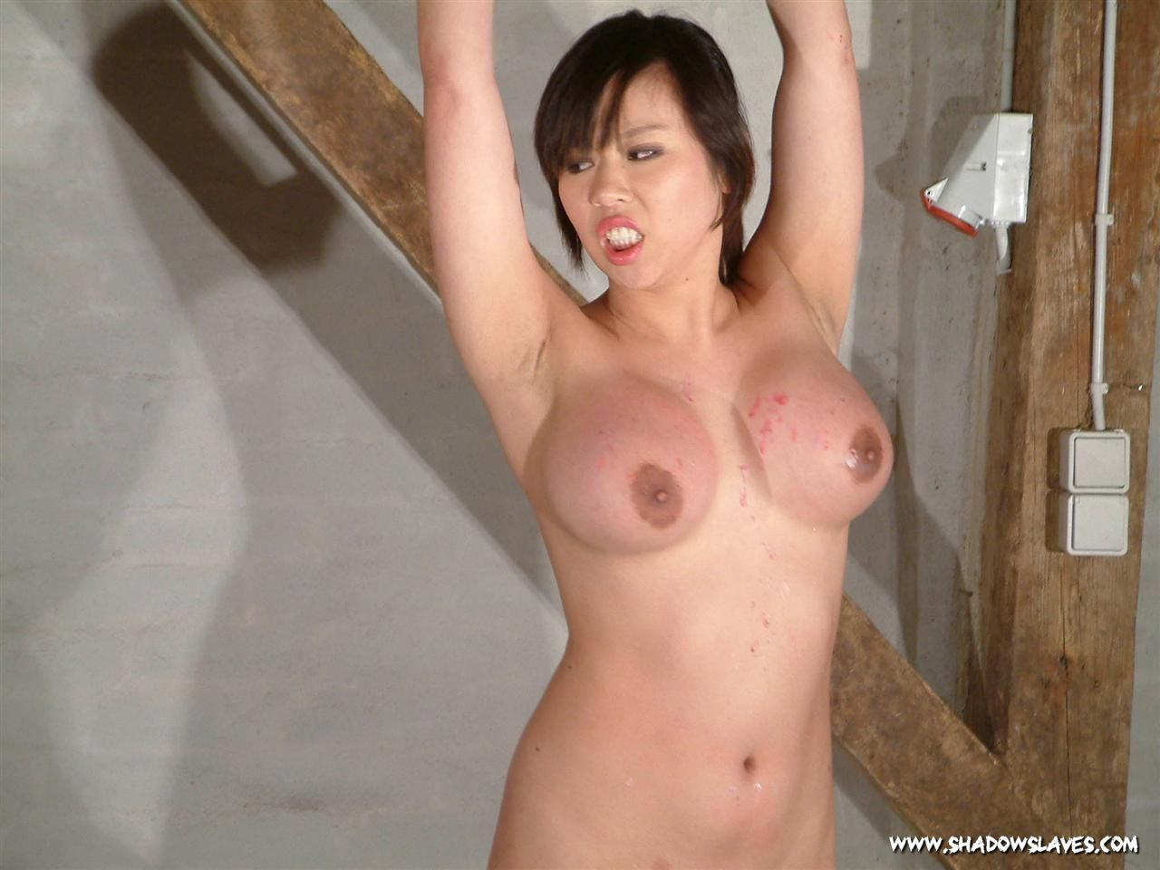 Girl asian bondage #8