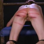 wheel-of-pain-12-elite-pain-movie thumbnail 19